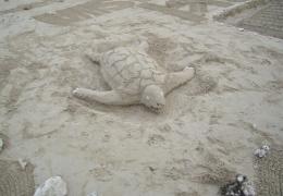beach-art1.jpg